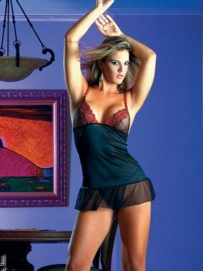 Sheer embroidered chemise.80152