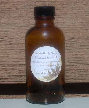 Plantain Herbal Infused Oil 4 ounces