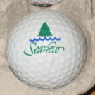 Seaview Golf Club Ultra Logo Golf Ball Abescum, NJ