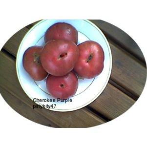 CHEROKEE PURPLE HEIRLOOM TOMATO ( 20) SEEDS