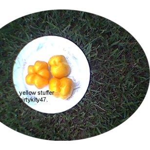YELLOW STUFFER HEIRLOOM TOMATO ( 20) SEEDS  VEGETABLE