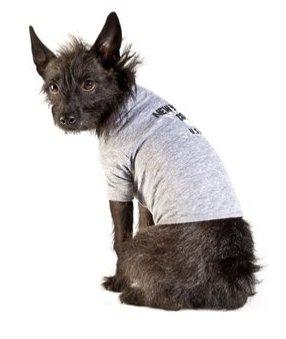 Marc Jacobs Dog shirts NYC size Medium