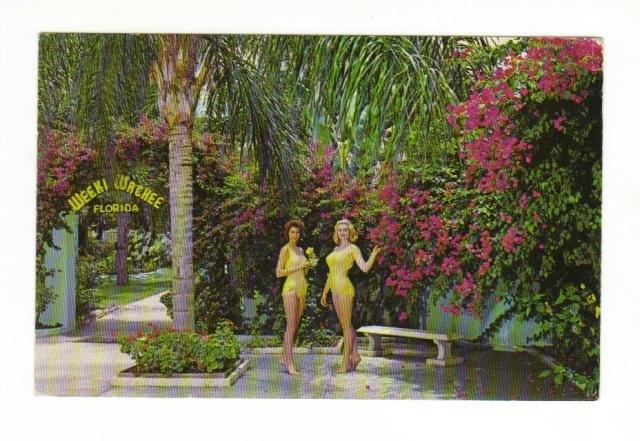 Vintage Postcard, Weeki Wachi.  Very Good Condition