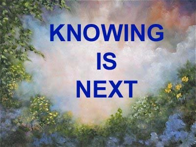 Knowing Is Next Ebook on Compact Disc