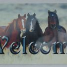 3 HORSES WELCOME SIGN 8 X 12 INCHES NEW ALUMINUM HORSE