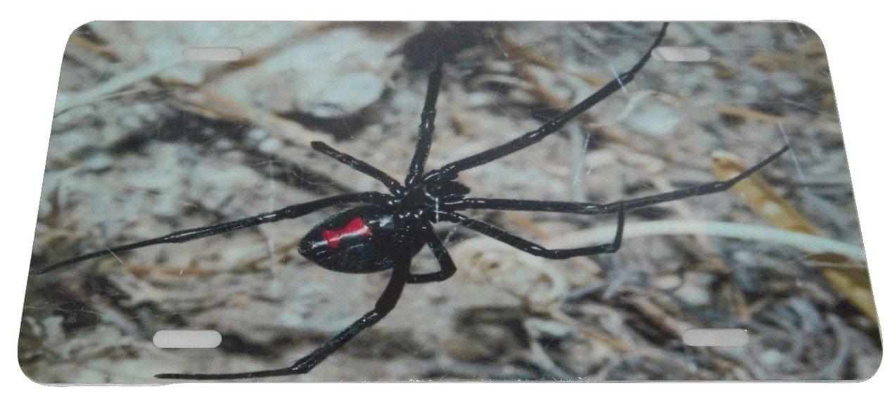 BLACK WIDOW SPIDER LICENSE PLATE 6 X 12 NEW