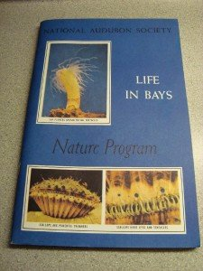 National Audubon Society Nature Program Life In Bays