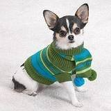 Chilly Day Turtleneck Dog Sweater W/Poms Silky Pug S NW