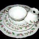 Crown Bavaria JULIETTE dinnerware cups- Germany