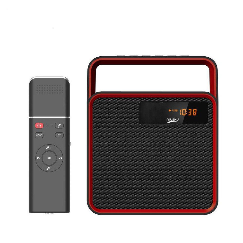 Multi-function karaoke bluetooth 4.2 speaker - 2000 mAh battery, clock, alarm clock, FM radio