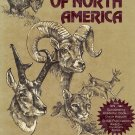 Big Game of North America  Ecology and Management