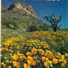 National Geographic The Great Southwest by Charles McCarry
