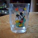 Walt Disney World 2000 Glass