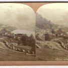 Antique Stereoscope Card Roldal Norge