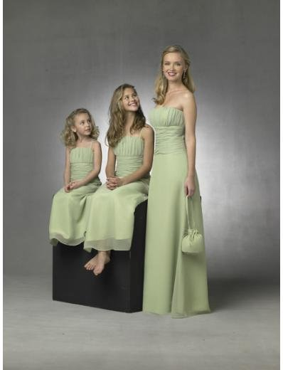 Column/Sheath Strapless Floor Length Chiffon Bridesmaid Dresses for brides new style(BD0269)