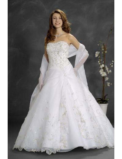 A-Line/Princess Strapless Cathedral Train Organza wedding dress (WD9025)