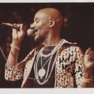 """Errol Brown Hot Chocolate SIGNED 8"""" x 10"""" Photo + Certificate Of Authentication 100% Genuine"""