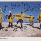 Super Furry Animals SIGNED Photo + Certificate Of Authentication  100% Genuine
