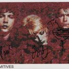 """The Primitives (80s Indie Band) Tracy Cattell SIGNED 8"""" x 10"""" Photo + COA 100% Genuine"""