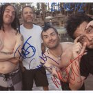"NOFX (Band) FULLY SIGNED 8"" x 10"" Photo + Certificate Of Authentication 100% Genuine"