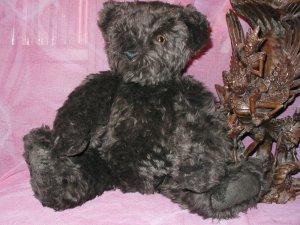 Vermont  big dark brown Bear