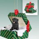 Newfoundland Green Gift Box Ornament