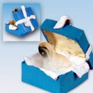 Lhasa Apso, Brown Blue Gift Box Ornament