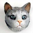 Shorthair Silver Tabby Magnet