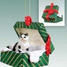 Shorthair Black & White Tabby Green Gift Box Ornament