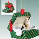 Cornish Rex Tortoise & White Green Gift Box Ornament
