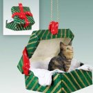 Maine Coon Brown Green Gift Box Ornament