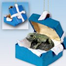 Iguana Blue Gift Box Ornament