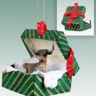 Long Horn Steer Green Gift Box Ornament
