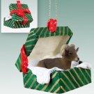 Big Horn Sheep  Green Gift Box Ornament