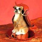 Boxer, Uncropped Devil