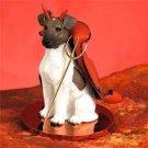 Fox Terrier, Brown & White Devil