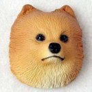 Pomeranian Red Puppy Magnet