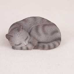 Silver Tabby, Pleasant Dreams