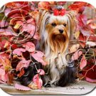 BAMP04 Yorkshire Terrier Mouse Pad