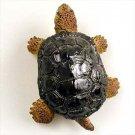 AM69 Turtle Magnet