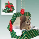 GGBA30A Squirrel, Red Green Gift Box Ornament