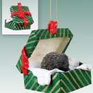 GGBA55 Porcupine Green Gift Box Ornament