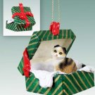 GGBC21 Scottish Fold Tortoise & White Green Gift Box Ornament