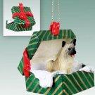 GGBD55B Akita, Fawn Green Gift Box Ornament