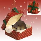 RGBA36 Beaver Red Gift Box Ornament
