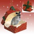 RGBA64 Kangaroo Red Gift Box Ornament