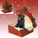 RGBD30 Newfoundland Red Gift Box Ornament