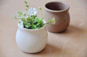 Mini Porcelain Plant Pot