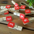 Clothespin with Number Plate 0 – 9 (On Sale)