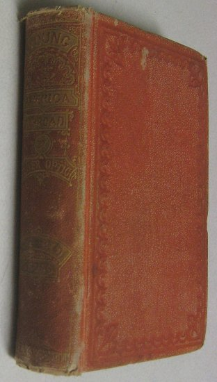 Rare 1st Antique 1870 America England & Wales History, Old Oliver Optic Book Red Cross